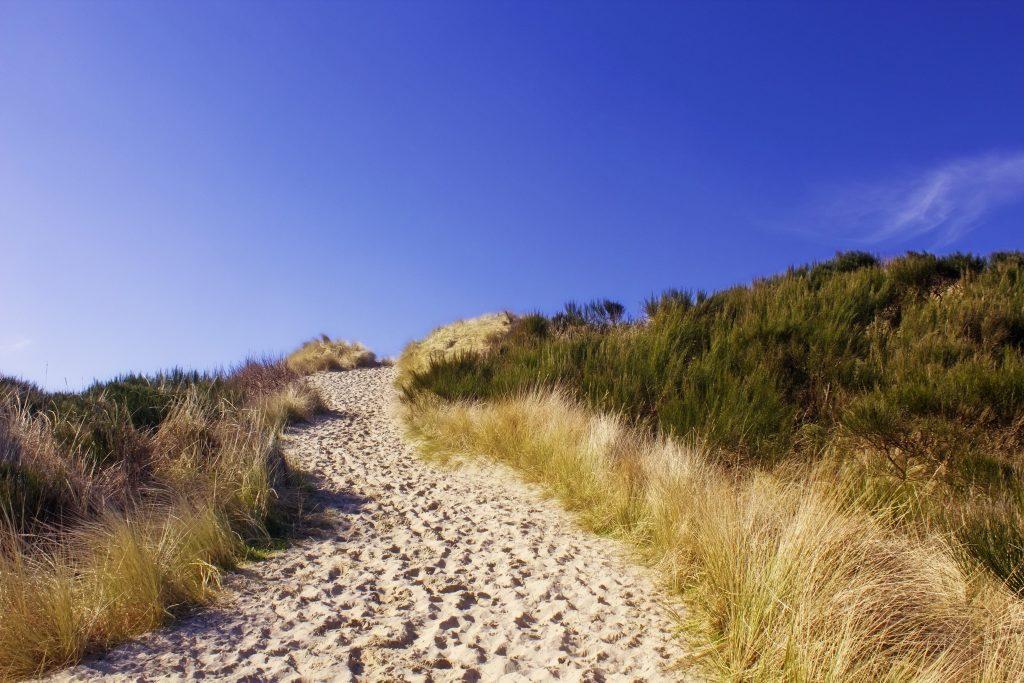 dunes-way_zJ4IoJFd