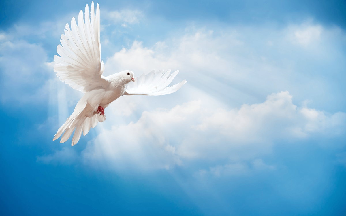The Holy Spirit is Lord - Wesleyan Covenant Association